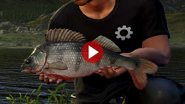 bergsee-fishing-thumbnail