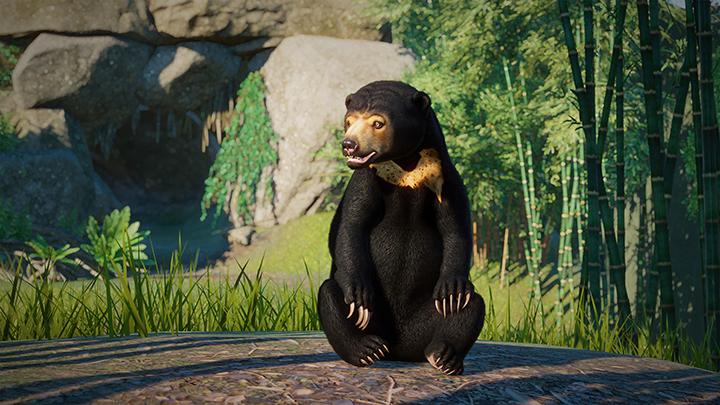 PZ_SEAAP_Screenshots_720_Bear_3