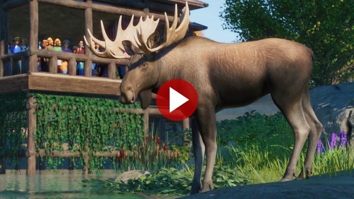 PZ_NAAP_Screenshots_Moose_Close_Trailer_720px